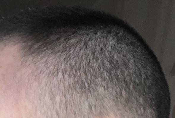 Welche Bart Farbe Zu Dieser Haarfarbe Haare Rasur Barthaare