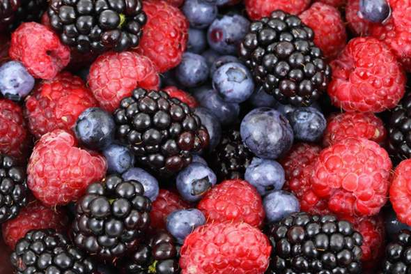 Which berries do you like to eat?