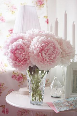 welche blumenarten natur blumen flower. Black Bedroom Furniture Sets. Home Design Ideas