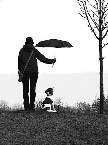 Welche Distanzen kann ein dreibeiniger Hund laufen?