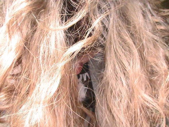 Bild 1 - (Frisur, Friseur, Haarfarbe)