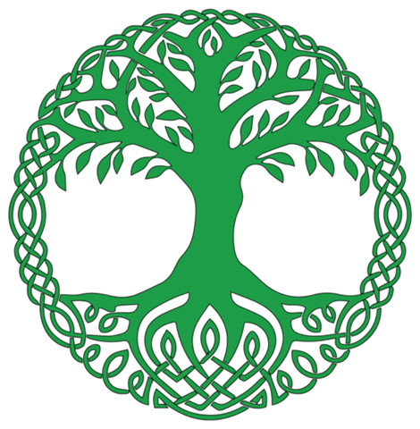 Welchen Baum habt ihr im keltischen Horoskop?