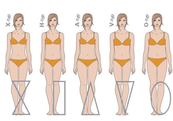 Frau körperbau einer guter Körperbau