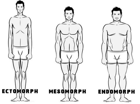 .... - (Körper, Frauen, Männer)