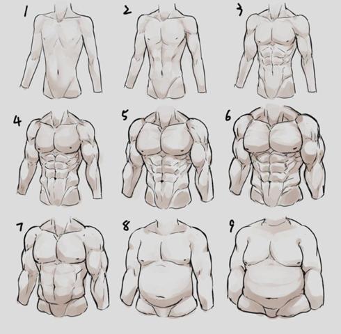 Der Perfekte Körper