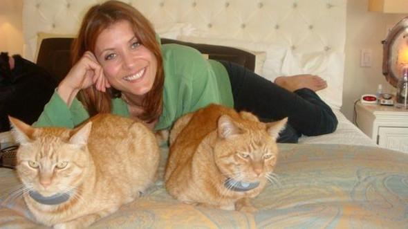 (Bildquelle: http://www.cbsnews.com/news/kate-walsh-id-absolutely-make-a-cameo-o - (Tiere, Katze, Schauspieler)