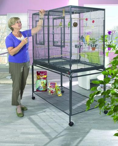 welcher vogel k fig ist am besten m dchen beauty v gel. Black Bedroom Furniture Sets. Home Design Ideas