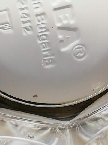 Welches 1mm insekt ist das?