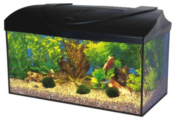 Das hier müsste das Aquarium sein. Hat jemand Erfahrungen mit diesem gemacht? - (Fische, Aquarium, Aquaristik)