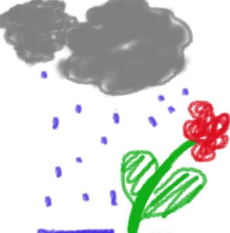 Blume/Regen  - (Liebe, Bilder, Umfrage)