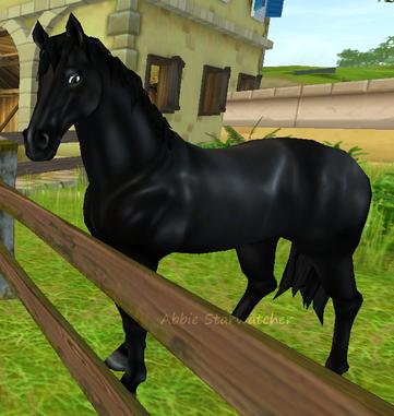 Welches Pferd? (Sso)? ...