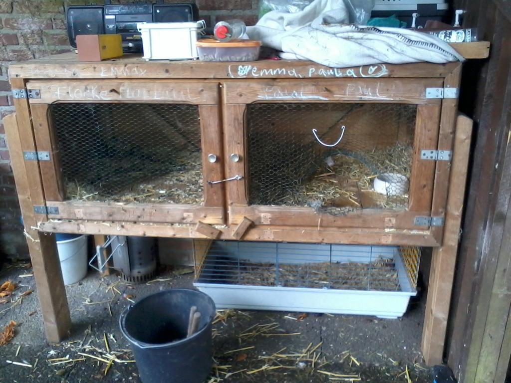 welches tier reist ein riesiges loch im maschendraht vom kaninchenstall t tet ein 5kg kaninchen. Black Bedroom Furniture Sets. Home Design Ideas
