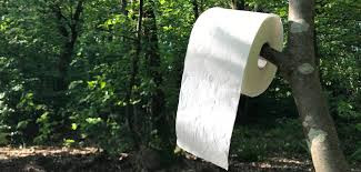 Welches Toilettenpapier kann ich in der Natur lassen?