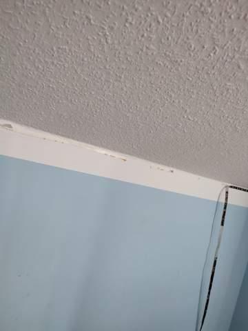Wenbekomme ich Klebestreifen von der Wand?