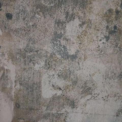 So sieht die Wand aus   - (verzweifelt, Wand, tapezieren)