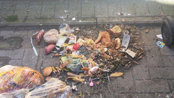 Ausgekippt - (Mehrfamilienhaus, Mülltrennung, Biotonne)