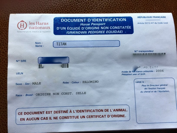 Papiere Pass - (Pferde, Frankreich, Ahnenforschung)