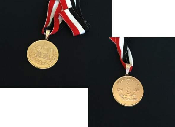 Wer kann mir sagen wofür diese Medaille ist?