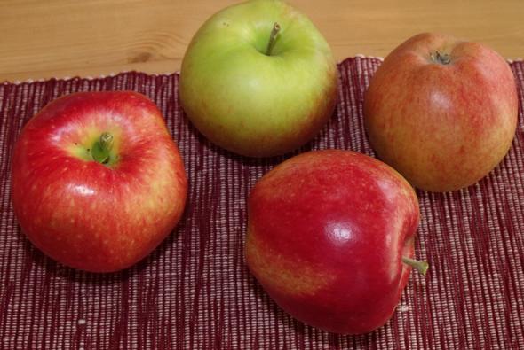 4 Äpfel - (Garten, Obst, Apfel)