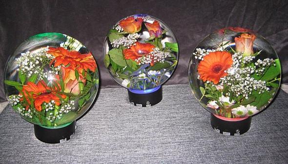Blumenaquarium - (Blumen, Dekoration, blumenaquarium)