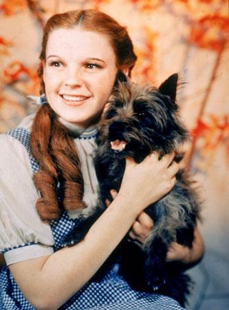 Wie alt war (Dorothy) also Judy Garland als sie beim Der Zauberer von Oz gespielt hat?
