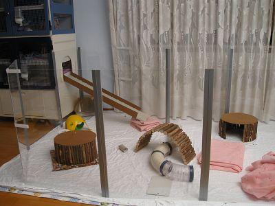 wie baut man so ein auslauf siehe bild und wie viel wird es ungef hr kosten tiere haustiere. Black Bedroom Furniture Sets. Home Design Ideas
