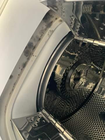Wie bekomme ich Schimmel  in meiner Waschmaschine raus?