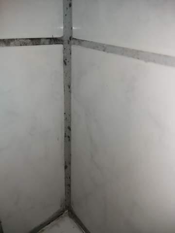 Wie bekomme ich Schimmel im Bad weg?