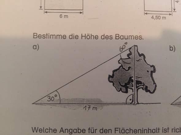Wie berechne ich zwei fehlende seiten im Dreieck?