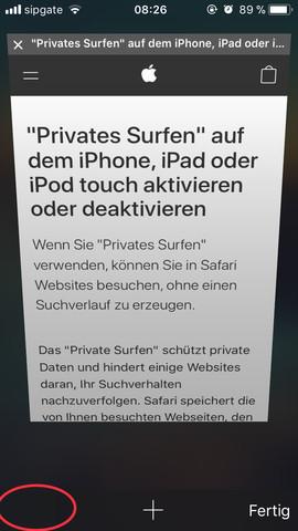 privat surfen safari