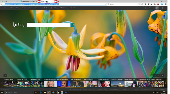 Wie werde ich die Suchmaschine Bing los? - (Suchmaschine, ecosia)