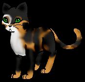 Eine Charakter Art von Schildkrötenschwanz (Download) - (Warrior Cats, Charakter-Art)