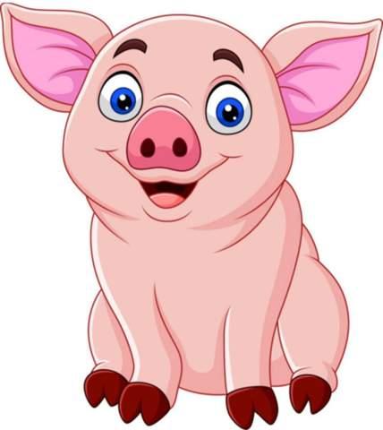 Wie findet ihr das Schweinchen?