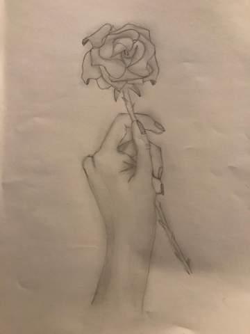 Malen einfach rosen Rose Malen