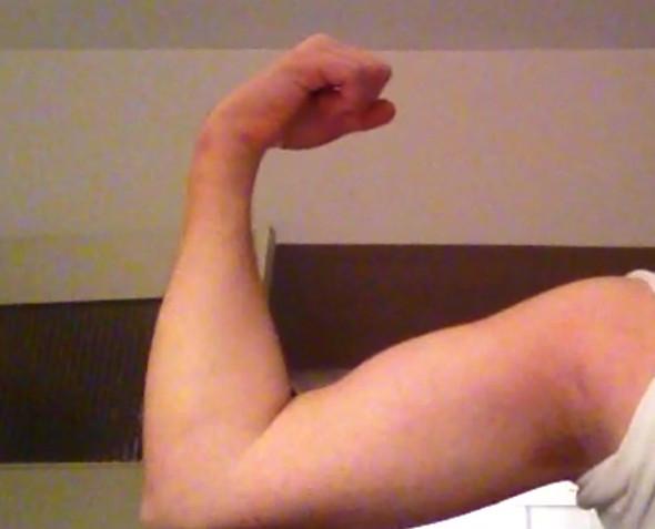 Durchschnittsbizeps - (Muskeln, Arm, Bizeps)