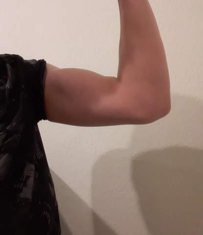 - (Körper, Aussehen, Muskeln)