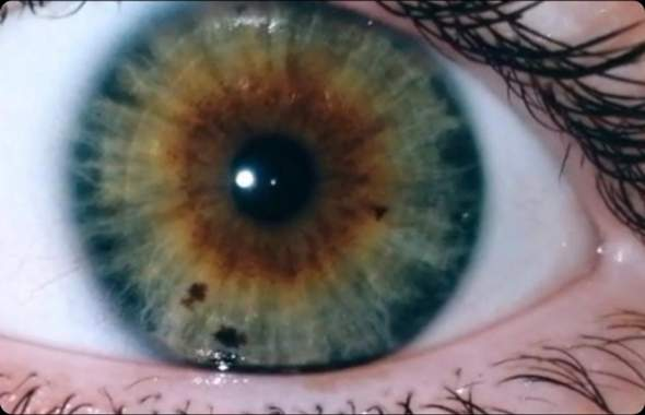 How do you find my eye color?