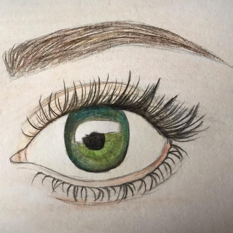 Auge  - (Kunst, zeichnen, Zeichnung)