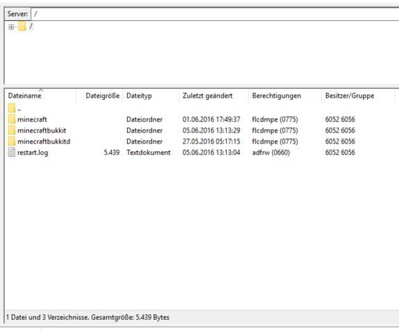Server Datei auf FileZilla - (Computer, Minecraft, Server)