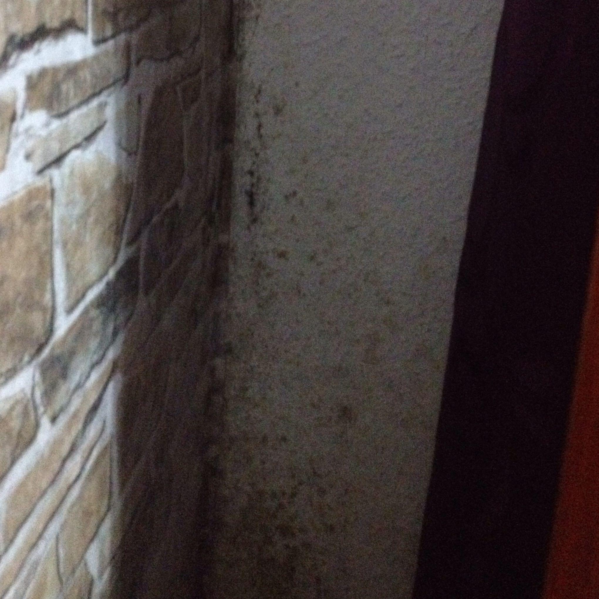 Wie Gefährlich Ist Schimmel Im Schlafzimmer Wohndesign Und - Gruner schimmel im schlafzimmer