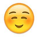 Grinsender Smiley mit geröteten Wangen - (Liebe, Beziehung, Freunde)