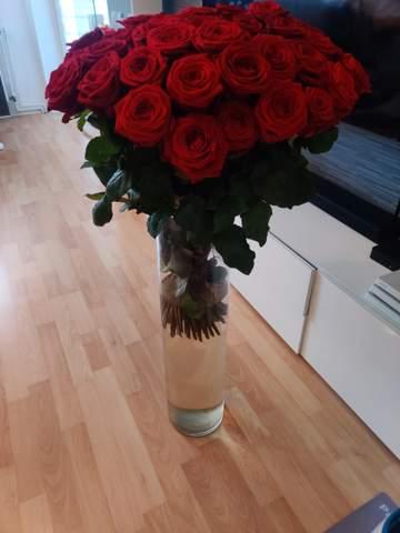 Wie halte ich ein Strauß Rosen länger frisch?