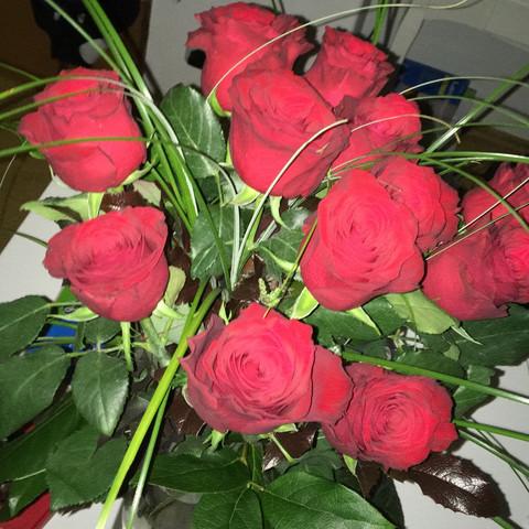 wie halten rosen am besten lange liebe beziehung freunde. Black Bedroom Furniture Sets. Home Design Ideas