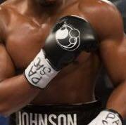 wie heißen diese boxhandschuhe marke?