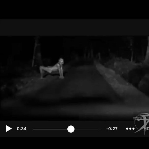 Grave Encounters? - (Film, Facebook, Horror)