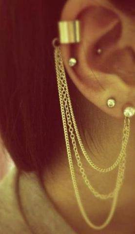 Diese hier - (Piercing, Ohr, Ohrringe)