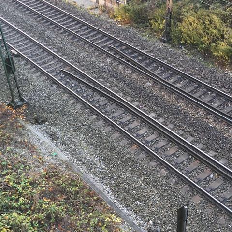Wie heißt das Gleis in der Mitte und für was ist es da?