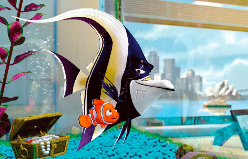 Wie hei t diese fischart kann ich sie im aquarium halten for Fische halten