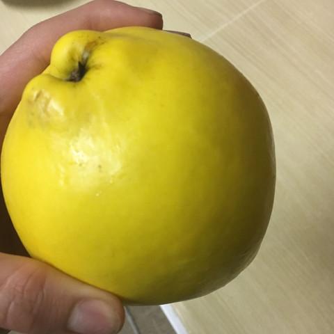 Ist aufjedefall kein apfel und keine birne - (Früchte, gelb)