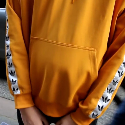 Wie heißt dieser Adidas Hoodie und wo kann ich den finden?